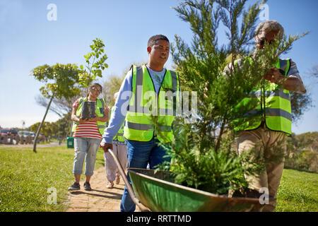 Freiwillige Anpflanzung von Bäumen im sonnigen Park - Stockfoto