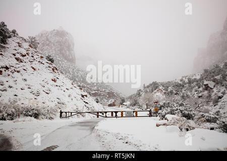 Zion-Mount Carmel Highway geschlossen während eines Schneesturms, Zion National Park, Utah - Stockfoto