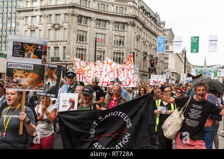 London, England - 29. Mai 2017: Tierschützer auf Demonstration gegen fow Jagd in London - Stockfoto
