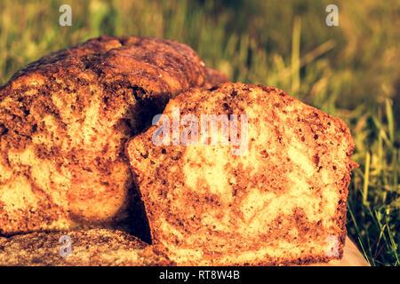 Lecker und flauschige Schoko und Zitrone Biskuitboden auf Gras Hintergrund. Close Up. Selektiver Fokus - Stockfoto
