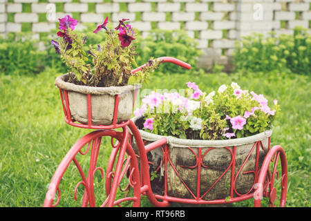 Blumen im Korb auf einem dekorativen Fahrrad im Garten - Stockfoto