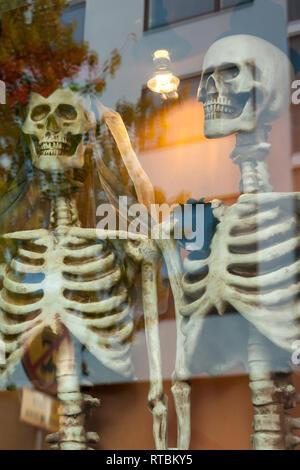 Zwei gekleidet für Hochzeitsreisende Skelette auf dem Fenster. - Stockfoto