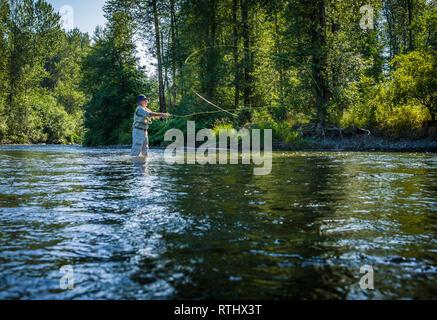 Ein 70 Jahre alter Mann Fliegenfischen in der Cedar River, Western Washington, USA. - Stockfoto