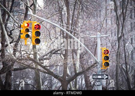 Ampel mit rotem Pfeil und ein Weg mit Bäumen im Hintergrund - Stockfoto