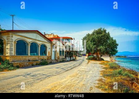 Steiniger Weg zusammen mit dem Meer mit croocked pinetrees und Goldglänzenden Gras in der Morgensonne. - Stockfoto