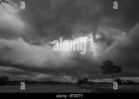 Schwere Gewitterwolken dynamische Himmel über Zwiebel Landwirtschaft Feld Landschaft neben Country Road b&w Foto - Stockfoto