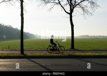 Die Silhouette eines Radfahrers mit Bäumen in der Morgensonne mit Nebel und Grasland - Stockfoto