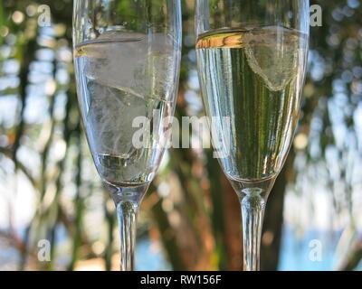 Romantische Szene mit close-up von zwei Flöten, gefüllt mit Champagner und Eiswürfel, mit palmwedel der Palmen im Hintergrund. - Stockfoto