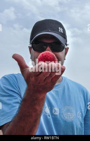 Ein Porträt über einen Mann mit einer schwarzen Kappe rote runde Frucht auf seine Hand in die Mole National Park, Ghana - Stockfoto