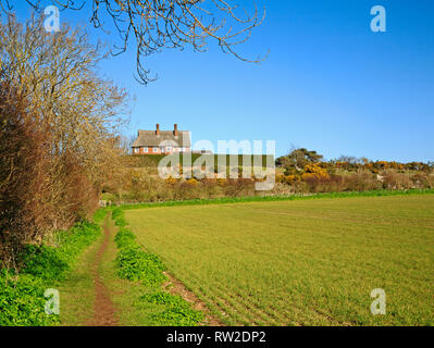 Eine Aussicht auf einen öffentlichen Fußweg und Rundweg durch Ackerland in North Norfolk bei Blakeney, Norfolk, England, Vereinigtes Königreich, Europa. - Stockfoto