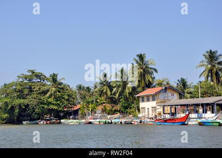 Sri Lanka, Balapitiya, Madu Ganga Fluss - Stockfoto