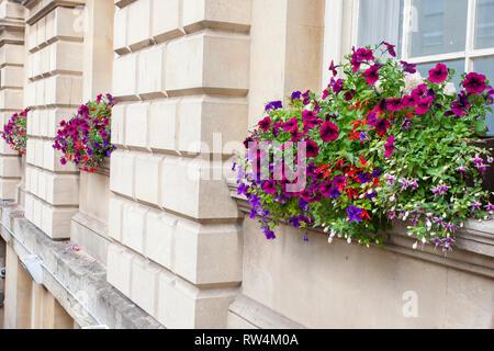 Beeindruckend und bunten Blumenkästen außerhalb der Pumpenraum in Badewanne, N.E. Somerset, England, Großbritannien - Stockfoto