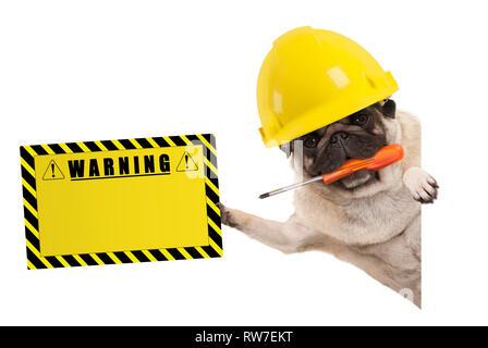 Bauarbeiter mops Hund mit konstruktor Helm Frolic, Holding orange Schraubendreher und gelb Warnung Schild, auf weißem Hintergrund - Stockfoto