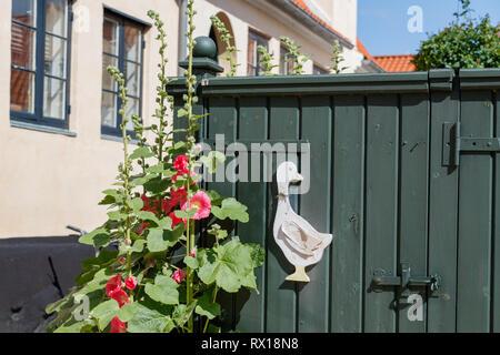In Dänemark, Dragør Altstadt mit engen, kopfsteingepflasterten Gassen mit historischen bunte Häuser von den 1700 und 1800 s gefüttert. - Stockfoto