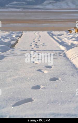 Fußabdrücke auf dem glitzernden Schnee fallen weg - Stockfoto