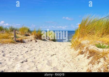Poel Strand Am Schwarzen Busch Auf Der Insel Poel In Deutschland