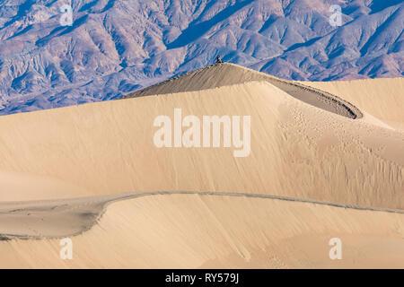 Riesige Fläche von Berg gesäumten Sanddünen erreichen 100 ft. & Ein Hauptpunkt für Sand-boarding. - Stockfoto