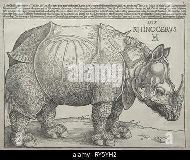 Das Rhinozeros, 1515. Albrecht Dürer (1471-1528). Holzschnitt; Bild: 23,8 x 30,1 cm (9 3/8 x 11 7/8 in - Stockfoto