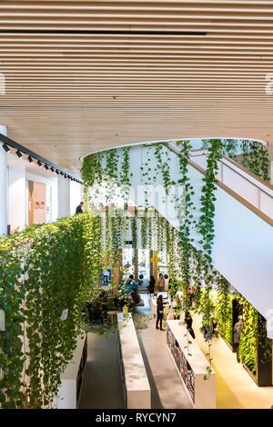Woollahra Bibliothek ist absolut einzigartig, da es innerhalb von viel Grün umgeben ist. Der Eingang hat eine vertikale Garten Wand, wo Bücher zurückgegeben werden können. T - Stockfoto