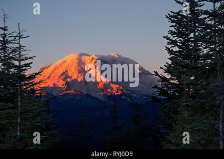 WA 15927-00 ... WASHINGTON - Sunrise Farbe auf Mount Rainier von Suntop Berg in den Berg Baker-Snoqualmie National Forest. - Stockfoto