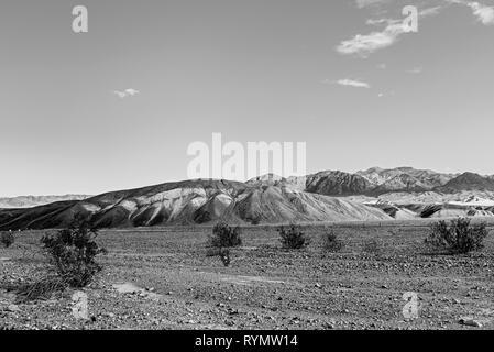 Schwarz und Weiß, spärliche Vegetation im felsigen Wüste Tal mit kargen Hügel dahinter. - Stockfoto