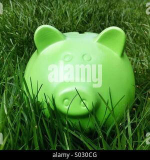 Grüne Sparschwein Formatfeld Geld in langen grünen - Stockfoto
