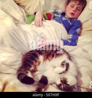 Schlafende junge und Katze. - Stockfoto