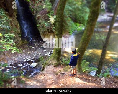 Ein sechs Jahre alter Junge sieht an einem Wasserfall auf Bean Creek. Santa Cruz County, California, USA Stockfoto
