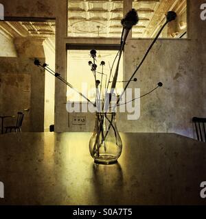 Vase auf Tisch im Morgenlicht mit Textur - Stockfoto