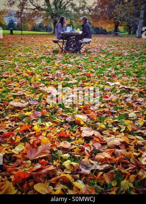 Familie Picknick im Herbst-park - Stockfoto