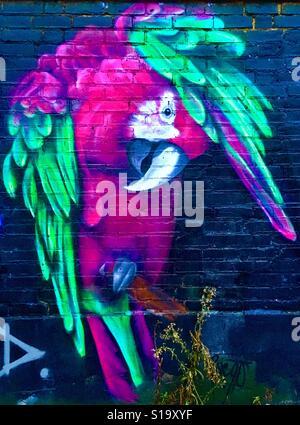Rosa & grünen Papagei Streetart Tooting, London - Stockfoto