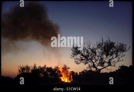 Tagesanbruch Lagerfeuer in Olive Land, Katalonien, Spanien.