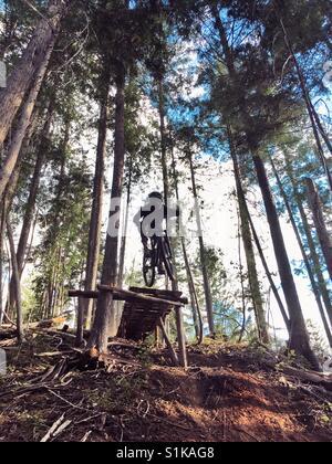 Ein Mountainbiker springt ein großer Tropfen in Nelson, British Columbia, Kanada. - Stockfoto