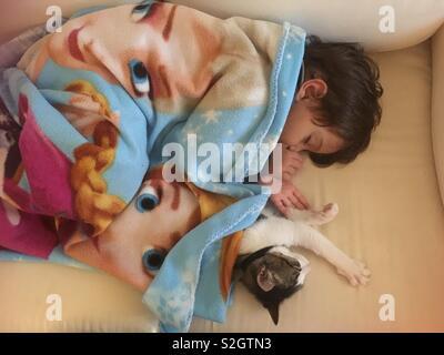 Baby Schlafsack mit einer Katze - Stockfoto