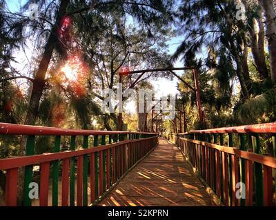 Sonntag im Park Mizujo - Stockfoto