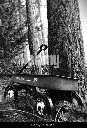 Ein altes Radio Flyer Wagen neben einem Baum in einem Wald. - Stockfoto