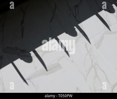 Schatten auf Fliesen- Wand geworfen. - Stockfoto