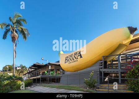 Die Big Banana in Coffs Harbour, New South Wales, Australien - Stockfoto