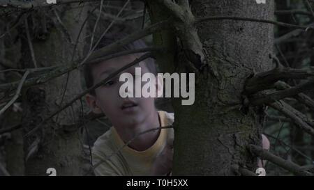 Ängstlich vorsichtige junge versteckt sich hinter einem Baum in einem schrecklichen trockenen Wald, der Junge ist sehr im Wald Angst - Stockfoto