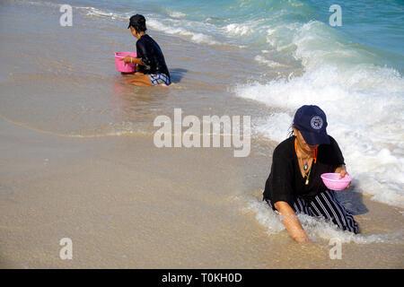 Thailändische Frauen Graben für Muscheln am Strand Lamai Beach, Koh Samui, Golf von Thailand, Thailand - Stockfoto