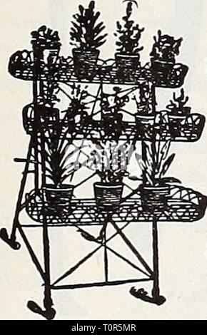 Dreer ist Herbst Katalog 1932 (1932) Dreer ist Herbst Katalog 1932 dreersautumncata 1932 henr Jahr: 1932 Magno Label reduzierbare Kabel Anlage Stand