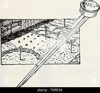Dreer ist Herbst Katalog 1932 (1932) Dreer ist Herbst Katalog 1932 dreersautumncata 1932 henr Jahr: 1932 Keystone Blatt Rack Anhang Magno Label
