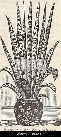 Dreer ist Herbst Katalog von Glühbirnen Dreer ist Herbst Katalog der Zwiebeln pflanzen Samen etc. für Herbst Pflanzung 1909 dreersautumncata 1909 henr Jahr: 1909 Luxonne. Reich, aber Soft violett-Purpur; sehr süß. Der Prinzessin von Wales. Nicht ganz so groß wie Luxonne, ein Schatten heller in der Farbe; intensiv duftend. Preis, eine der oben genannten Doppel- oder Einzelzimmer Veilchen, 15 cts. Jedes; - 1,50 $ pro dtz.; $ 10,00 pro 100. DREER in großartigen Mai-blühenden Bauerngarten oder Boulevard Tulpen wir zehn dieser wunder-schön Klasse der Tulpen auf der cov-ers Dieser Katalog zeigen. Für de-scriptions und Preise finden Sie auf den Seiten 10 und 11. Jeder s