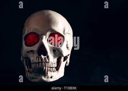 Menschlicher Schädel auf dunklem Hintergrund. - Stockfoto