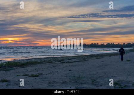 Erwachsene Mann gehen mit Stöcken auf den Strand am Abend in Hailuoto, Finnland - Stockfoto