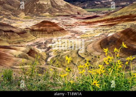 Sedimentgestein Bildung mit bunten geologische Schichten erodiert. Die malerische Landschaft. Badlands Landschaft in Painted Hills, Mitchell, Central Oregon, USA. - Stockfoto