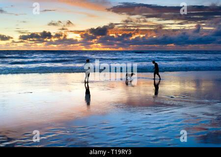 Paar spielen am Strand mit Hund, malerischen Sonnenuntergang Marine im Hintergrund, Bali, Indonesien - Stockfoto