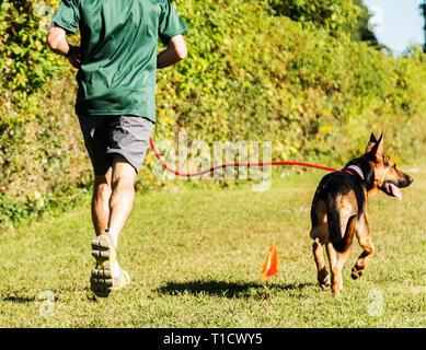 Ein Mann läuft mit seinem Hund an einem sehr sonnigen Tag an einem lokalen Park. - Stockfoto