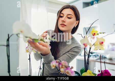 Frau ihre Orchideen auf Küche. Gerne Hausfrau kümmert sich Home Pflanzen und Blumen. - Stockfoto