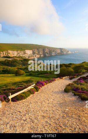 Ansichten, von, die, Nadeln, Alaun, Bucht, Von, Headon, Warren, Isle of Wight, England, Vereinigtes Königreich, - Stockfoto